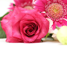 photo_pink